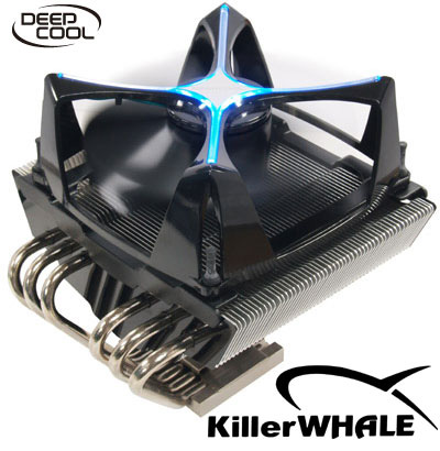 Scythe KillerWhale