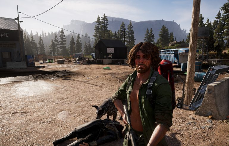 Far Cry 5 картнка 40