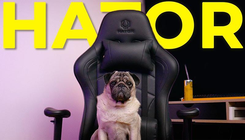 Лучшее бюджетное игровое кресло спустя год / Hator Sport Essential