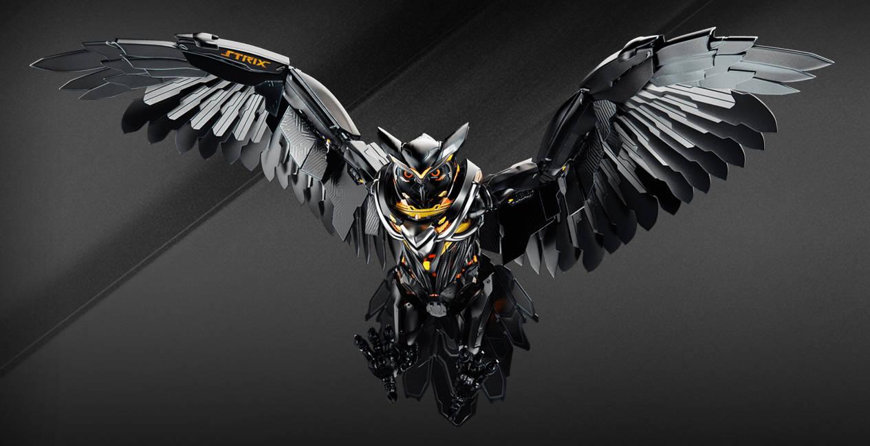 Орел Strix Pro