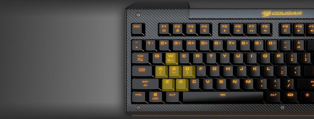 WASD клавиши выделены