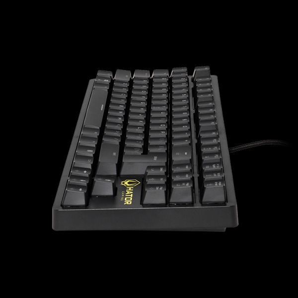 Hator Rockfall TKL Optical Black Switches (HTK-620) в интернет-магазине