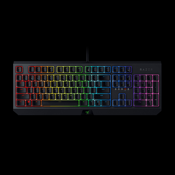 Razer BlackWidow (RZ03-02861100-R3R1) купить