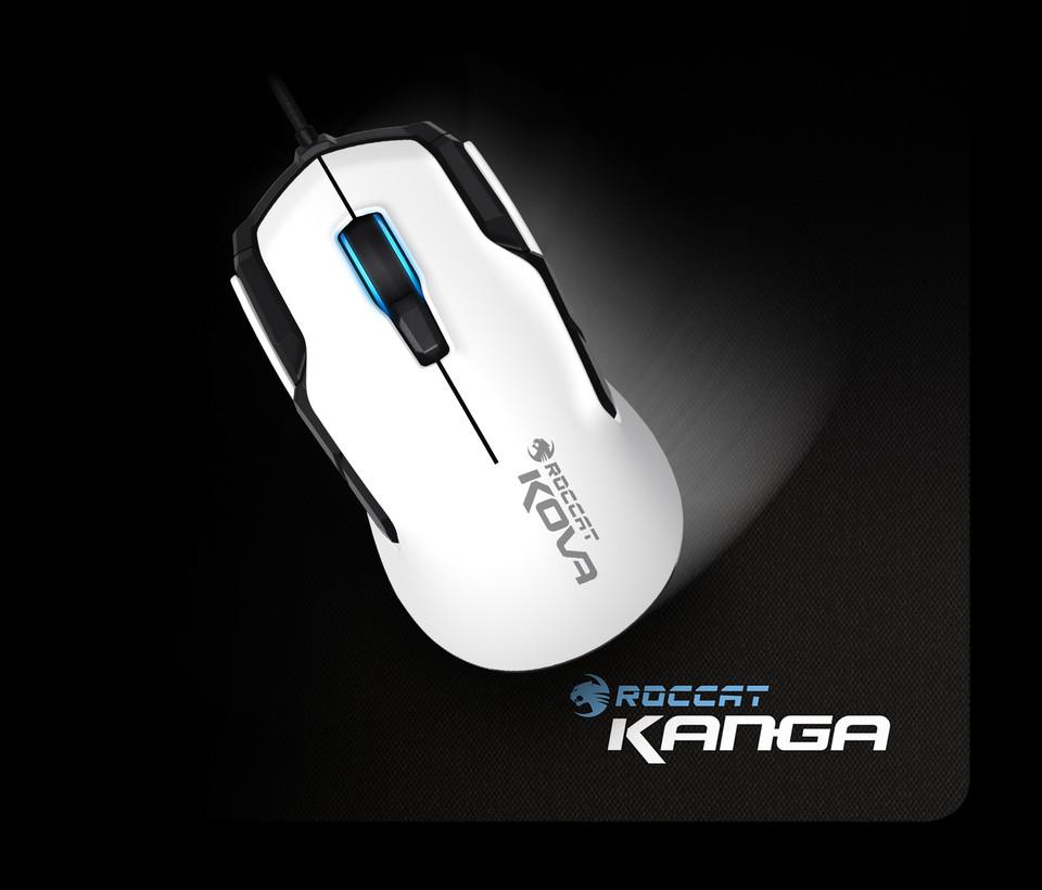 Roccat Kanga идеальный баланс