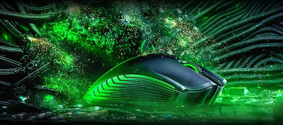 мышь в зелени