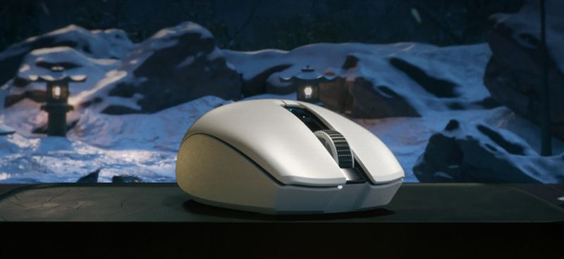 Фото белой мышки