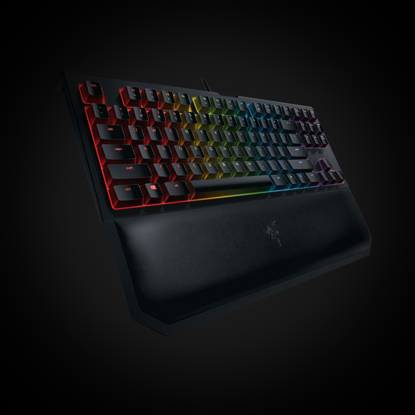 Razer BlackWidow Tournament Edition Chroma V2 Orange Switch (RZ03-02190700-R3M1) фото