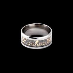 CS:GO Silver/Gold (Size 10)
