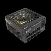 Seasonic Platinum P-520 Fanless (SS-520FL2)