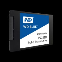 Western Digital Blue 250GB 2.5