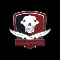CS:GO Collecible Pin Series 2: Bloodhound